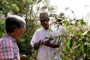 Talking to Ricardo at the Sembrandopaz farm